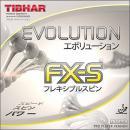 エボリューションFX-S