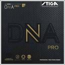 DNA プロH